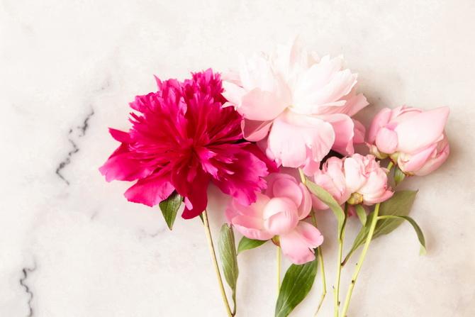 The Cherry Blossom Girl - beauty tips 01