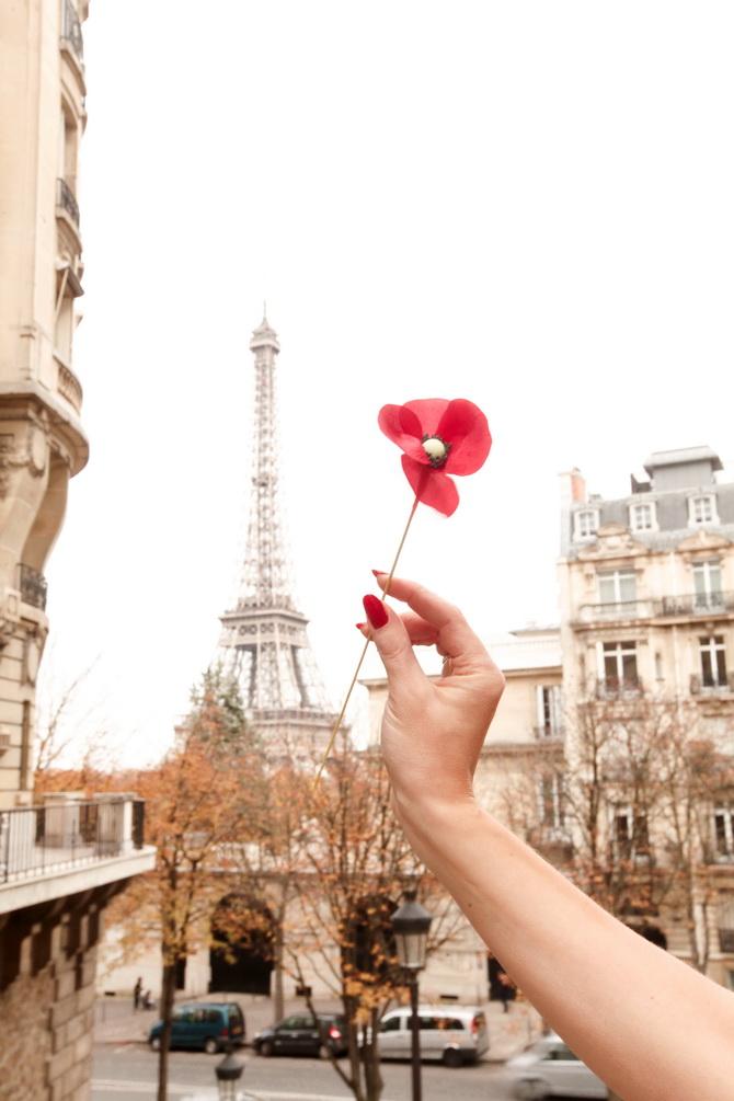 The Cherry Blossom Girl - Kenzo Une Fleur Dans La Ville 12