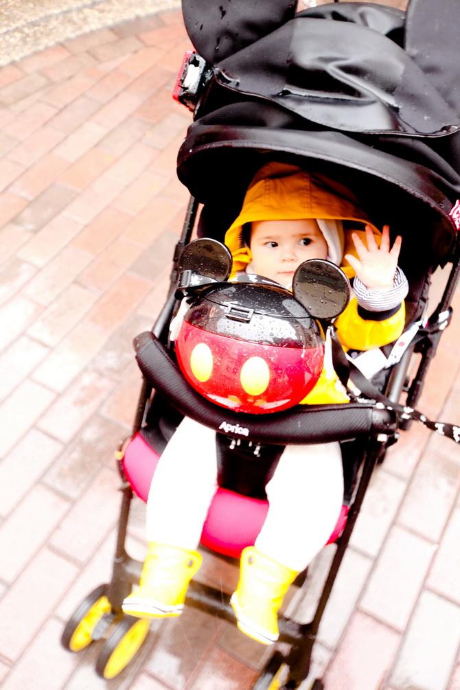 The Cherry Blossom Girl - Disneyland Paris La Foret De L'Enchantement 30