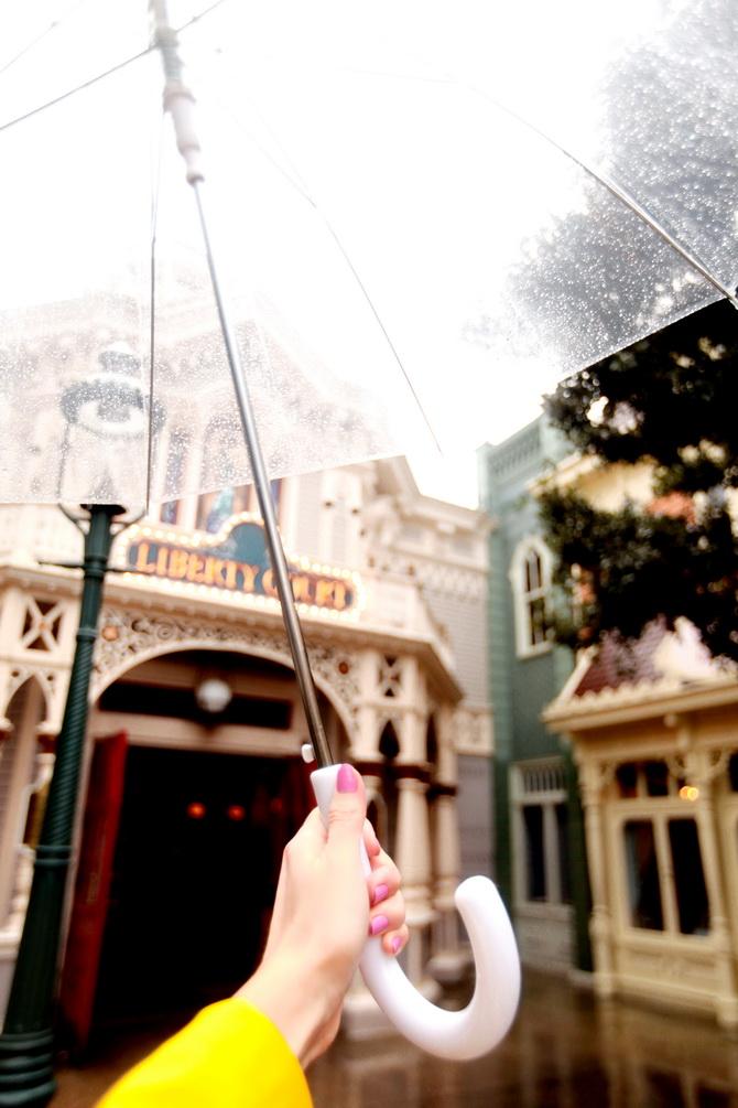 The Cherry Blossom Girl - Disneyland Paris La Foret De L'Enchantement 36
