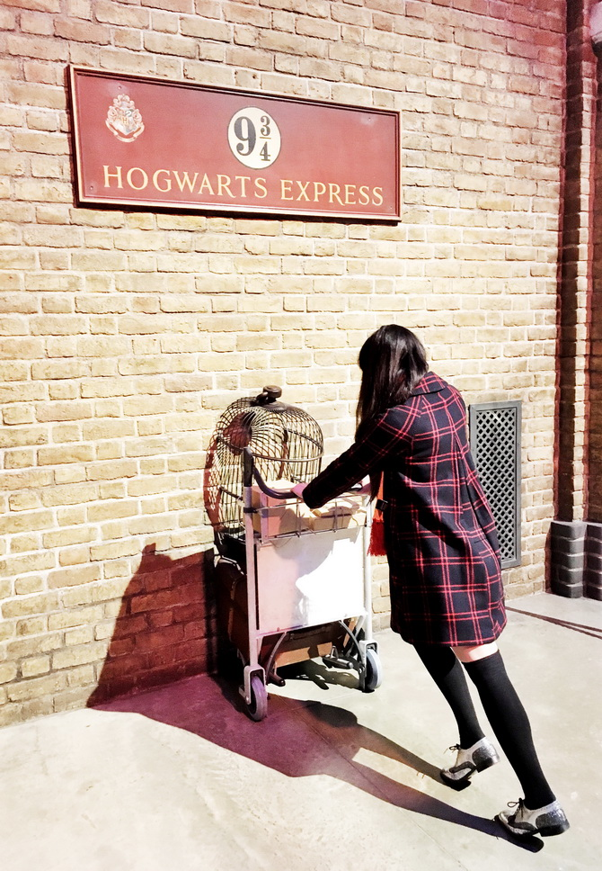 The Cherry Blossom Girl - Harry Potter Studio Tour 30