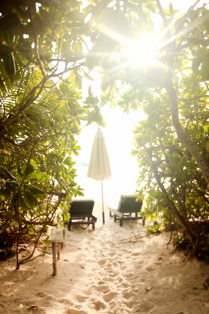 The Cherry Blossom Girl - Banyan Tree Seychelles 29