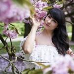 The Cherry Blossom Girl - Pauline Darley Cherry Blossoms 03