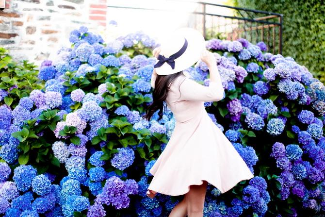 The Cherry Blossom Girl - Les Fleurs hortensia 02