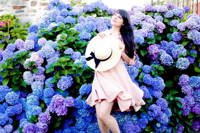 The Cherry Blossom Girl - Les Fleurs hortensia 04