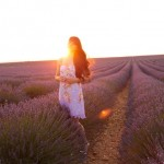 The Cherry Blossom Girl - valensole sunset 02