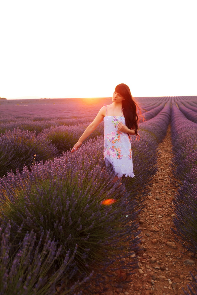 The Cherry Blossom Girl - valensole sunset 03